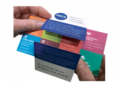 NECS_flip leaflet